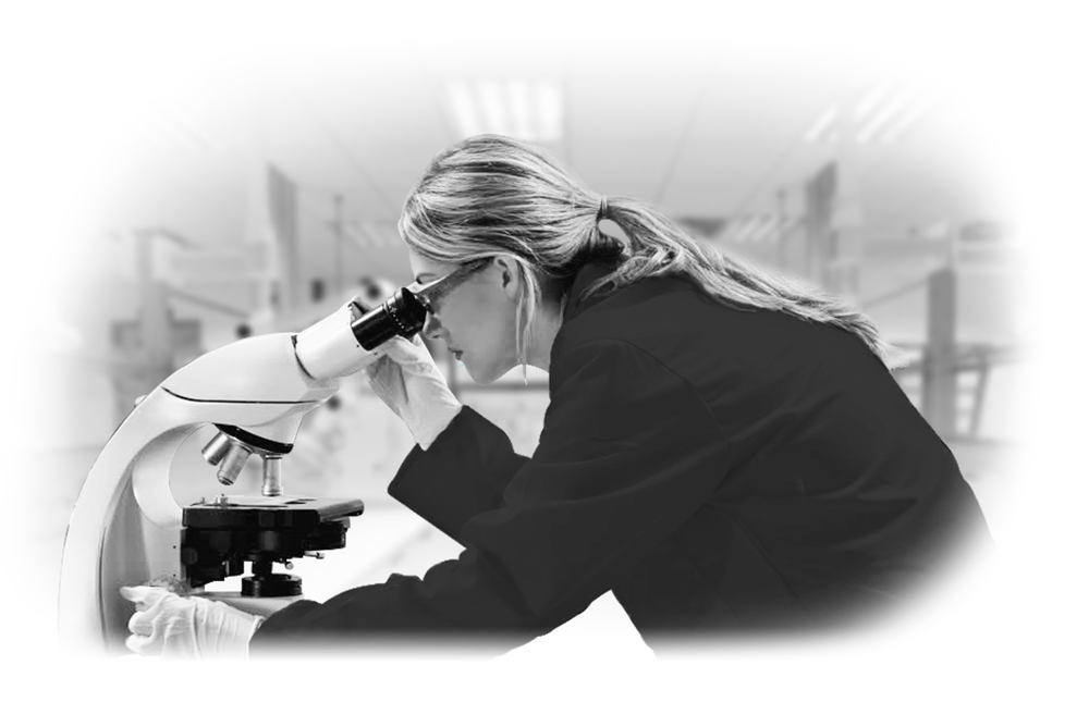 Laboratory Services – Materials Testing and Analysis